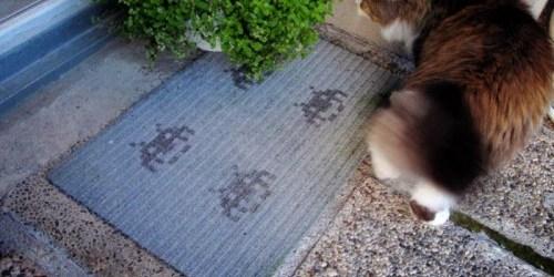 Easy DIY Colorful Doormat