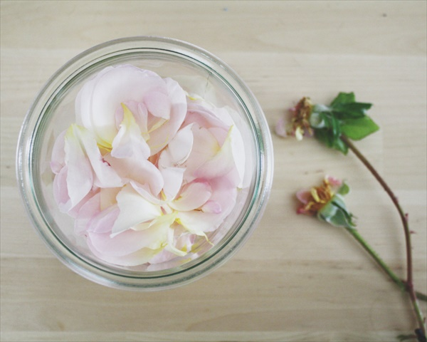 DIY to make rosewater at home