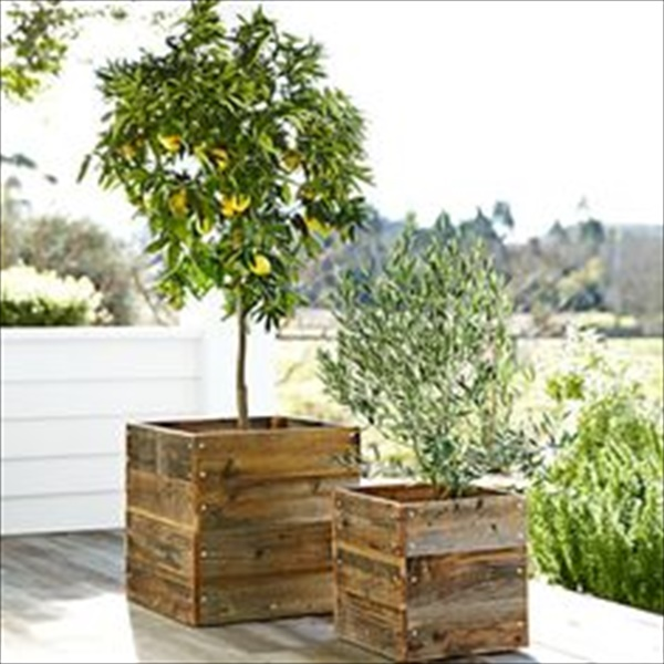 Awesome home gardening plans