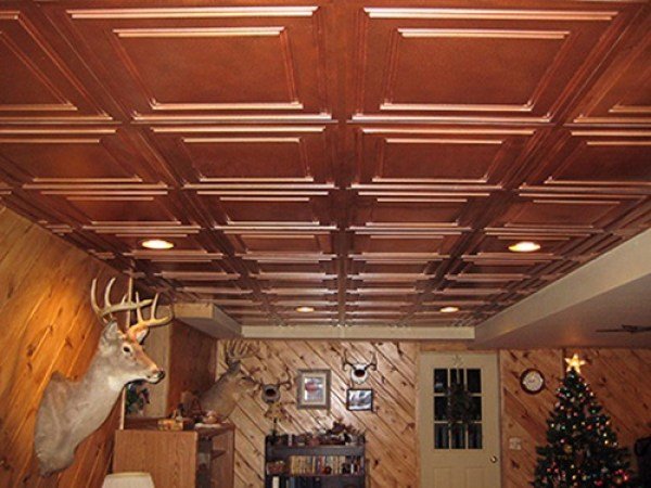Inexpensive  DIY ceiling Plans