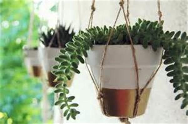 DIY flower planting