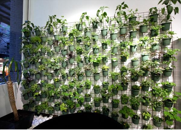 DIY unique Gardening projects