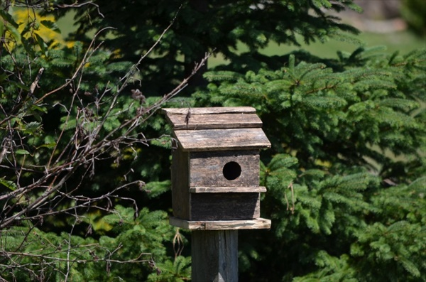 DIY old wood birdhouse
