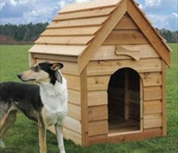 comfortable dog pallet house