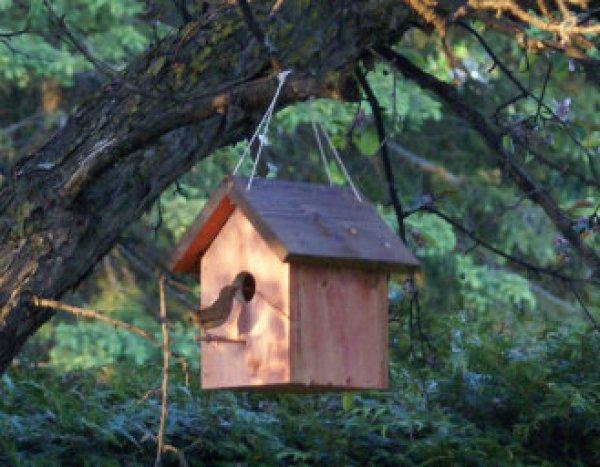DIY Innovative birdhouse ideas