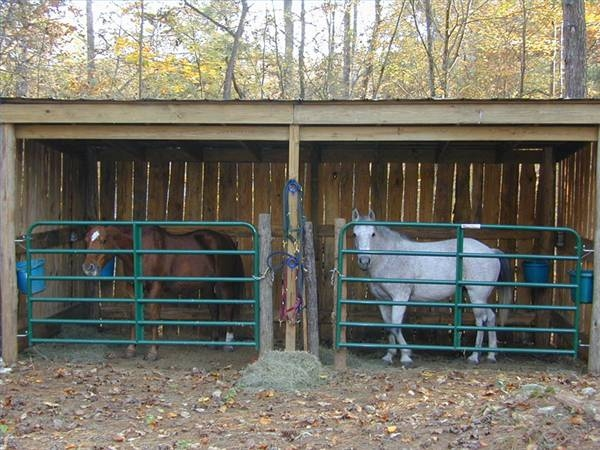 Horse Barns Do It Yourself : Diy easy horse shelter and crafts