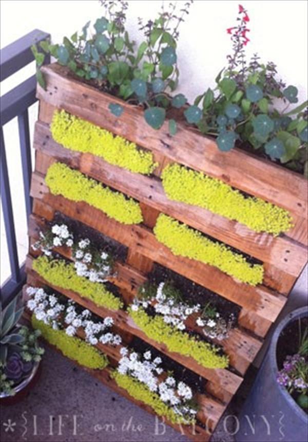 how to start home gardening