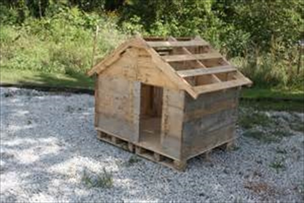 Dog house made of pallet