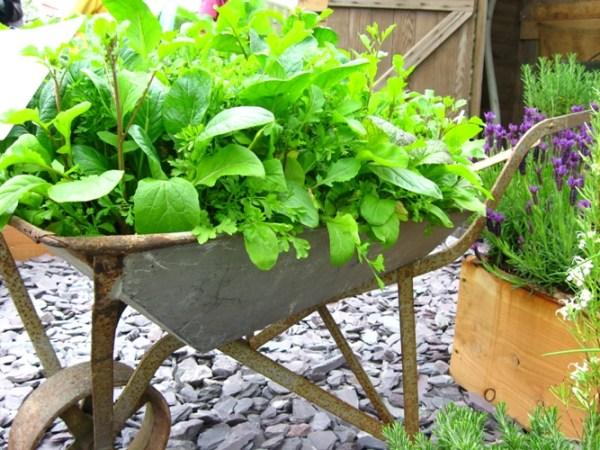 DIY easy vegetable gardening