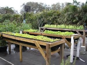 DIY Vegetable Gardening Ideas