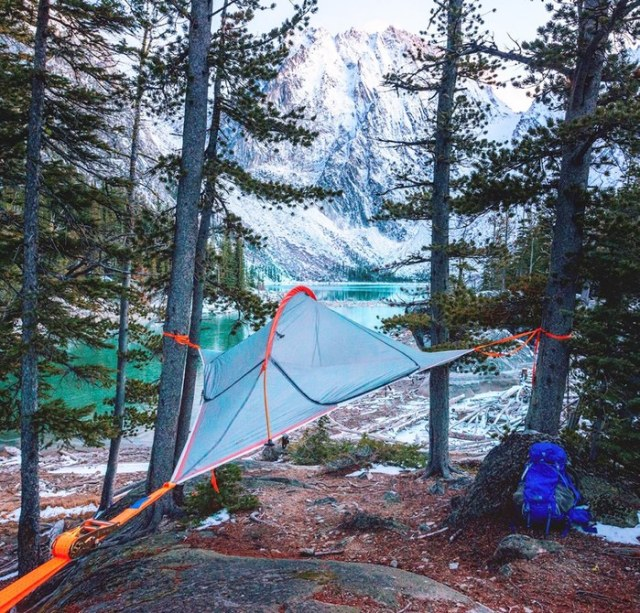hanging tree tenting