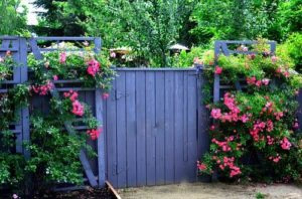 DIY Blue Fence