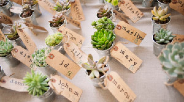 DIY Name on Plant