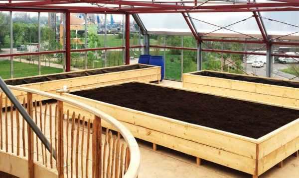 raised pallet gardens