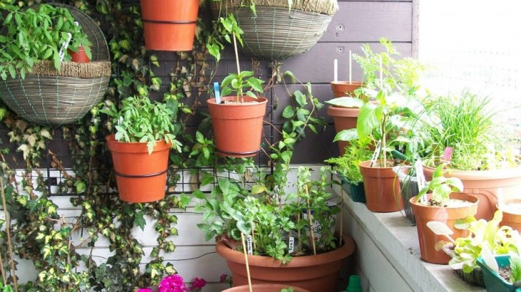 diy gardening decor tips