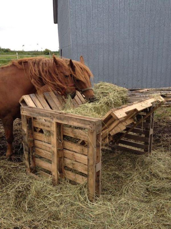 simple rustic pallet feeder