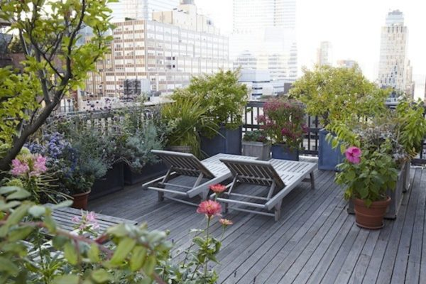 easy terrace garden ideas