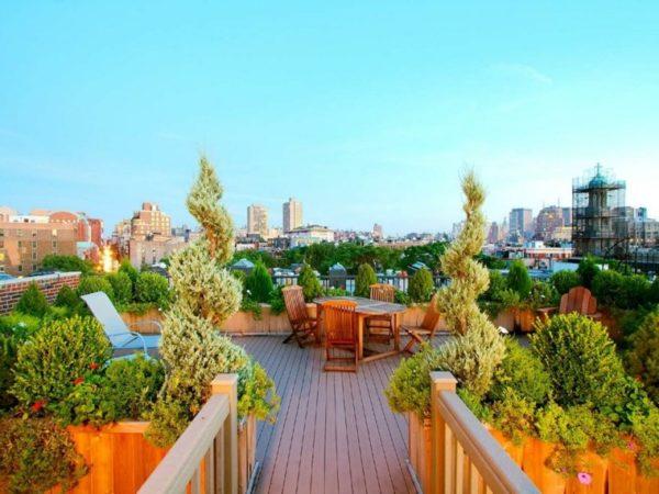 Diy Fabulous Terrace Gardens