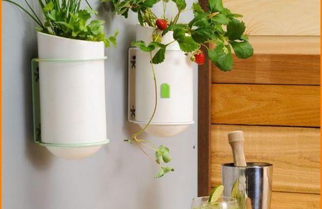 DIY Inspirational Home Decor Ideas