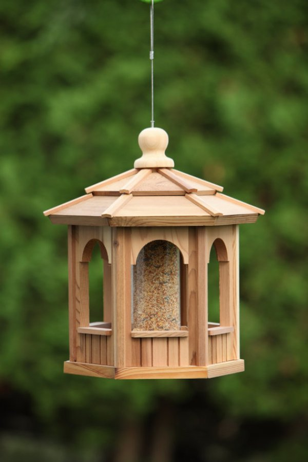 DIY bird food
