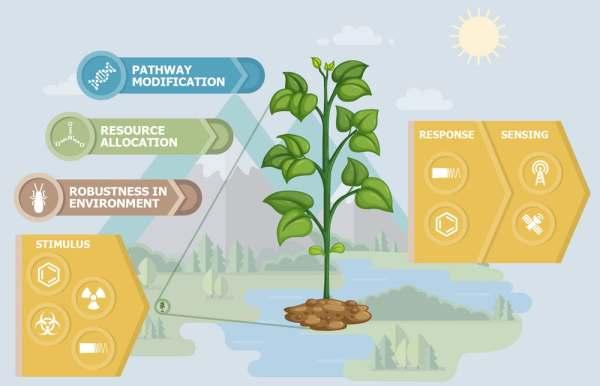 plant survillience technology