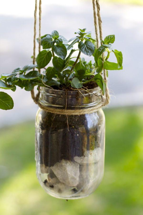 hanging planter DIY ideas