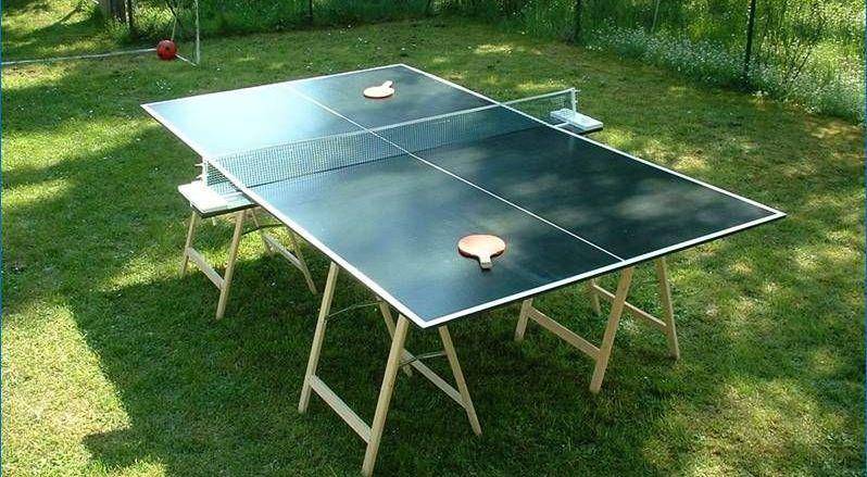 Ping Pong Table DIY