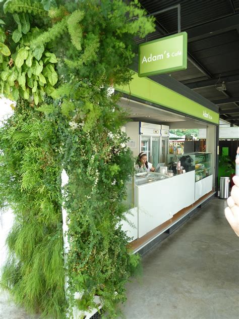 tips to go green naturally