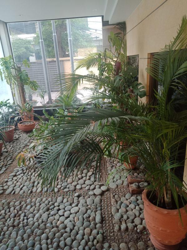 Landscaping DIY