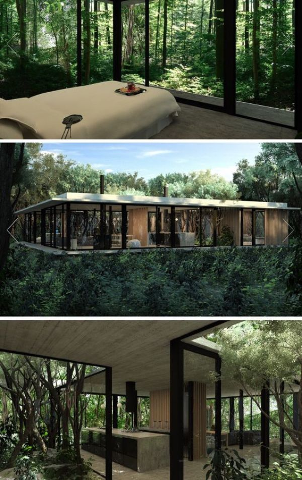 LUXURIOUS FOREST HOUSE