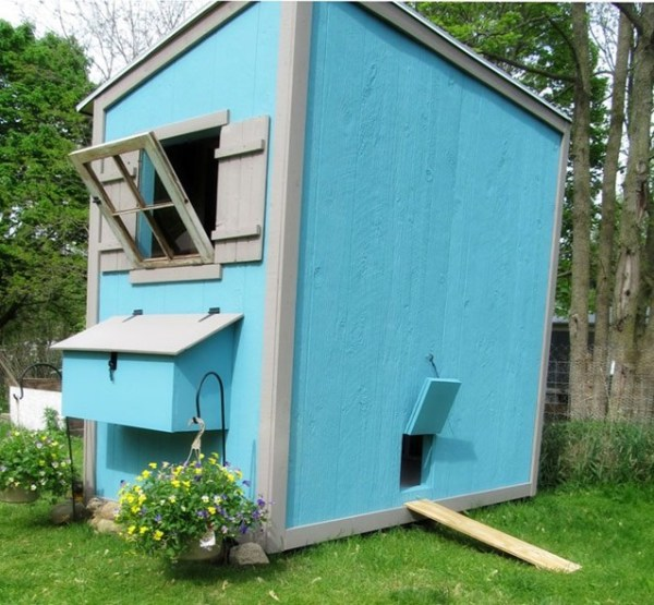 build your own pallet animal shelter