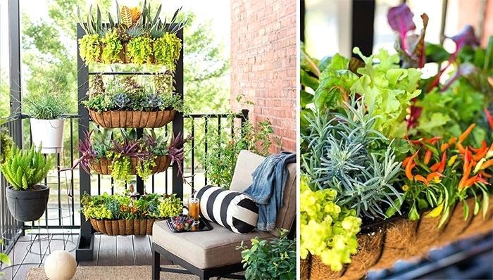 DIY Planter ideas