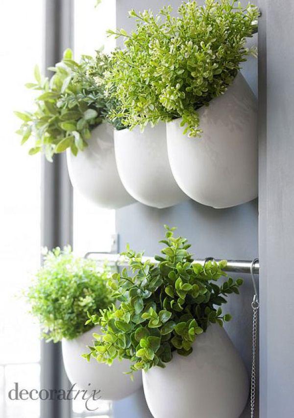 how to grow indoor gardens
