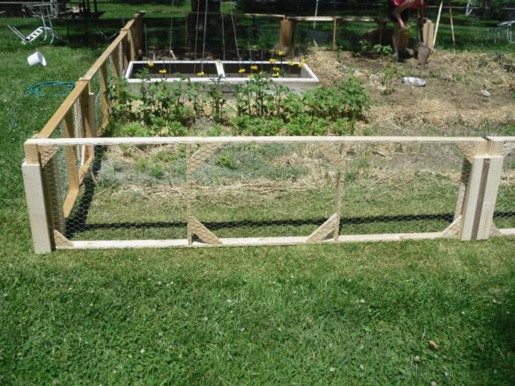 garden-fence-from-dogs-3