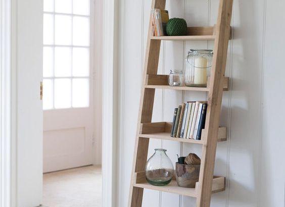 Easy to Make DIY Ladder Shelf