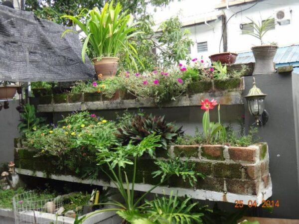 Wallspace Gardening Idea
