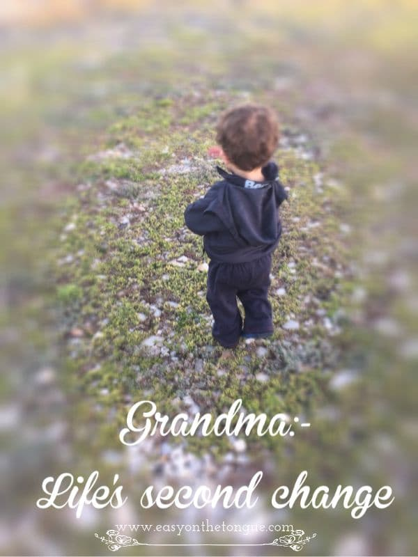 Grandma Lifes second change Grandchildren....lifes second change!