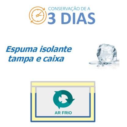 CAIXA TÉRMICA EASYCOOLER 8,5L-850