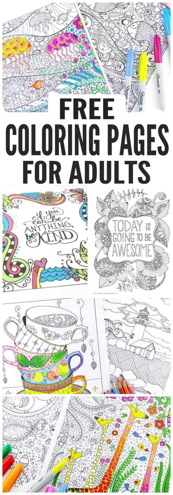 printable free coloring pages # 14