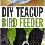 Diy Teacup Bird Feeder Easy Peasy And Fun
