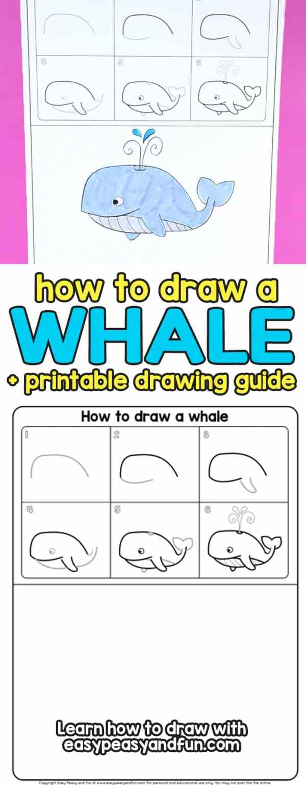 How to Draw a Whale Step by Step (cartoon style) - Easy ...