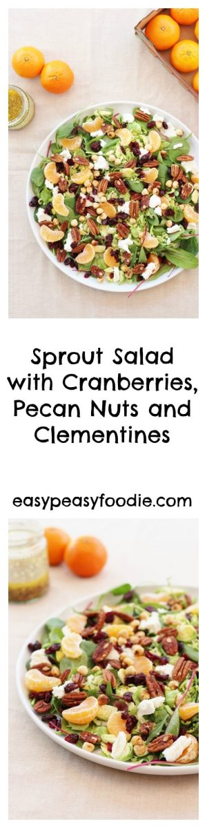 How do you prefer your sprouts? Boiled? Steamed? Roasted? Pan-fried? Or something else? How about not cooking your sprouts at all this year and trying them raw in a salad – like this delicious Sprout Salad with Cranberries, Pecan nuts and Clementines? #sprouts #rawsprouts #sproutsalad #cranberries #pecans #clementines #salad #vegetarian #christmas #easypeasychristmas #easypeasyfoodie