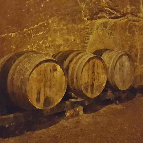 Wine Barrels in Chinon