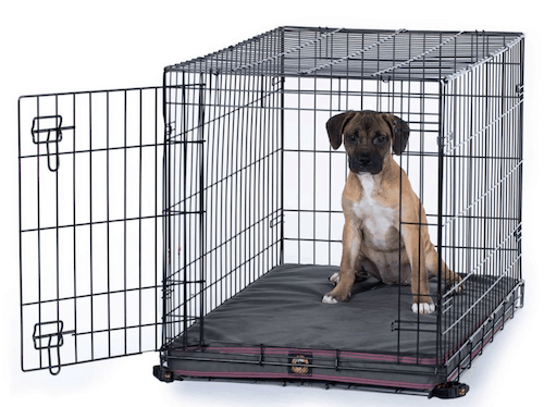 5 best chew proof dog beds for 2020
