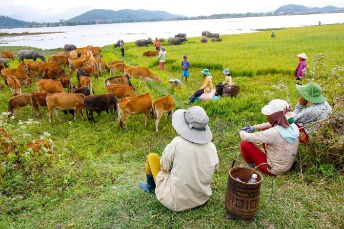 Cross the Central Highlands with an Easy Rider Hoi An to Dalat