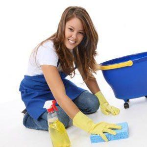 pacchetto 10 ore di pulizie domestiche inclusi detergenti roma