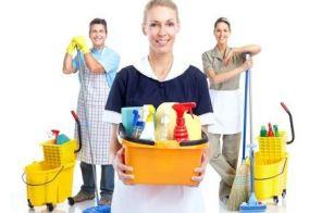 servizio annuale impresa pulizie roma