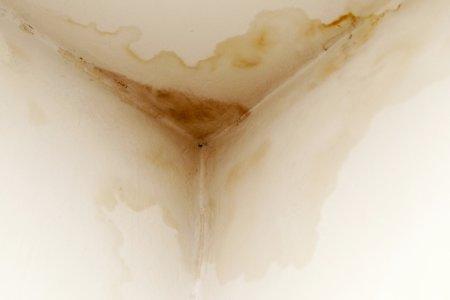Ripristino Soffitto Bagno per Infiltrazioni Acqua