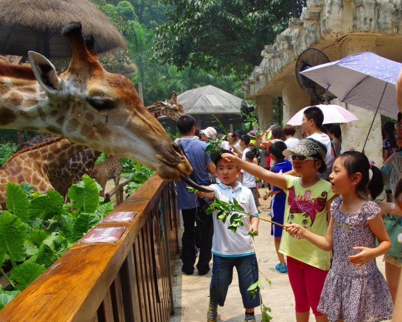 Chimelong Safari Park in Guangzhou