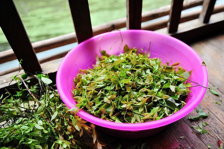 Guizhou specialty food